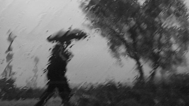 6 октября в Ивановской области ожидаются дожди, сильный ветер и ночные заморозки